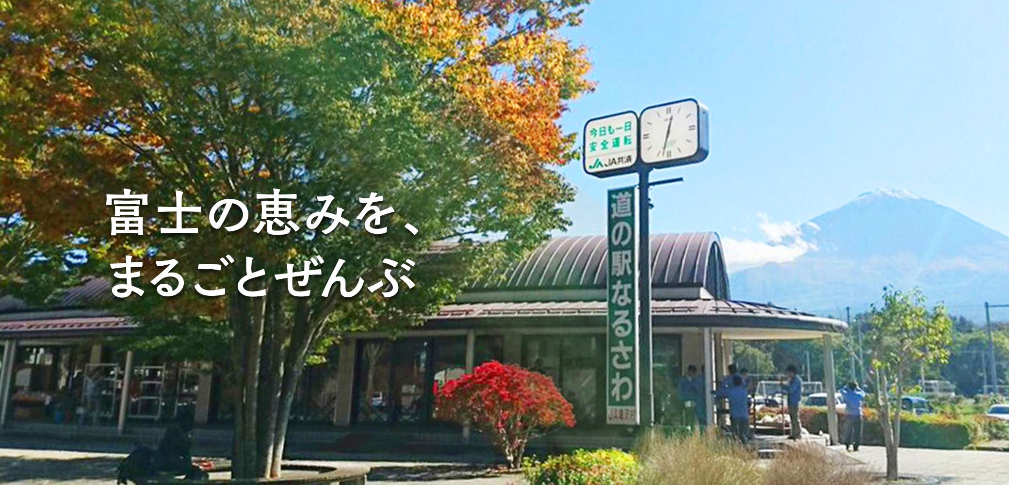 コロナ 鳴沢